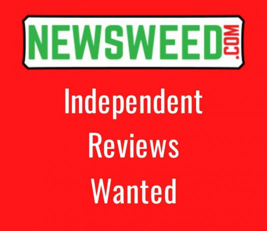 independent music reviews wanted